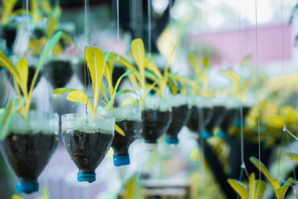 Riciclo creativo: risparmio e rispetto per l'ambiente con NonSoloRiciclo