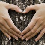 Complementi di arredo biologici, la filosofia di Vivere Zen